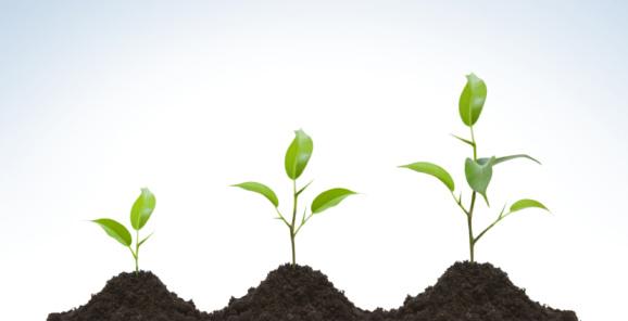 """Regeneration is birth; sanctification is growth."""